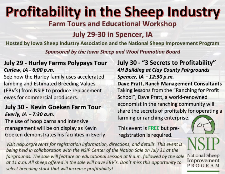 Profitability in the Sheep Industry Workshop | July 29-30 in Spencer, IA